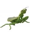Insecten knuffel sprinkhaan 35 cm