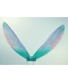 Blauwe sprookjes vleugels voor kinderen