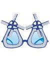 Delfts blauwe molenbrillen