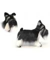 Schnauzer hondje 45 cm