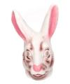 Grote konijnen masker
