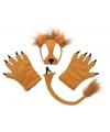 Pluche leeuw verkleed set