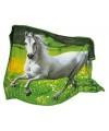 Pluche paarden fleecedeken