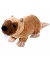 Knuffeldier van een bevertje 15 cm