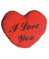 Hart kussen I Love You 60 cm