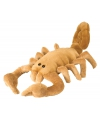 Schorpioenen knuffelbeesten