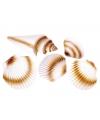 Decoratie zee schelpen set